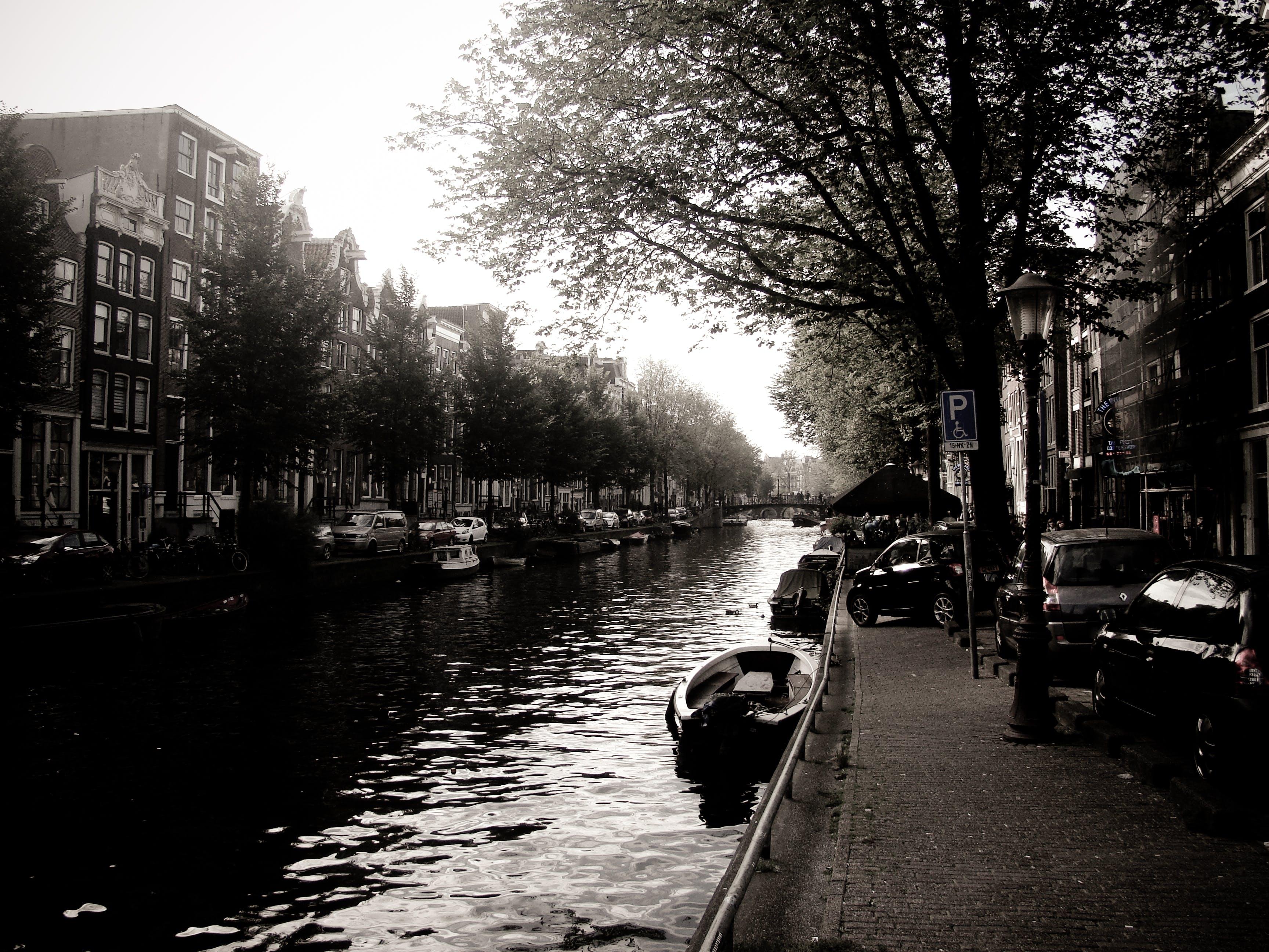 amsterdam, classic, nature