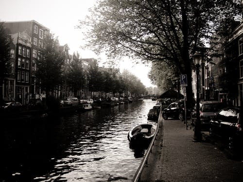 Free stock photo of amsterdam, classic, nature