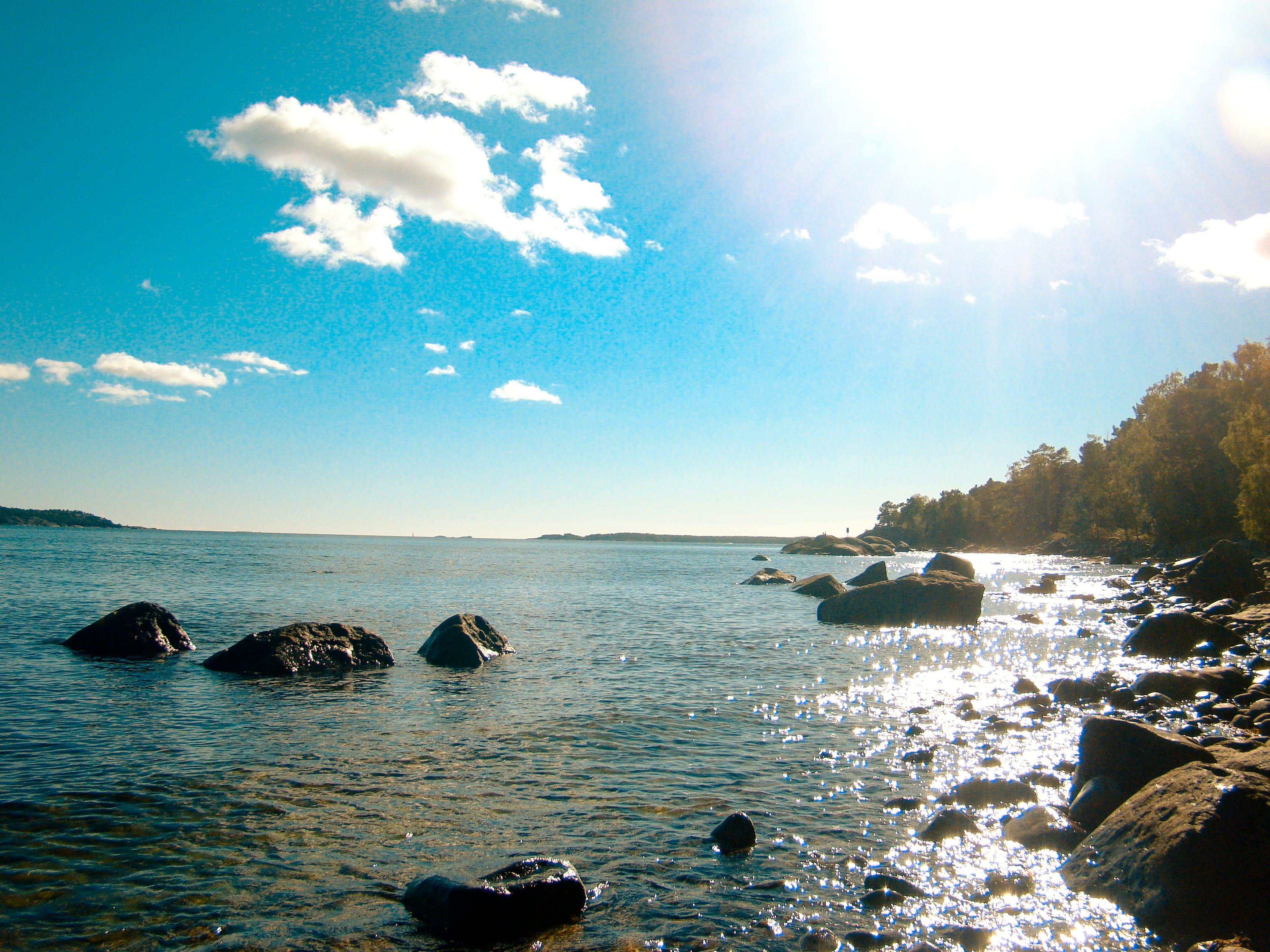 Free stock photo of nature, ocean, reflex, sweden