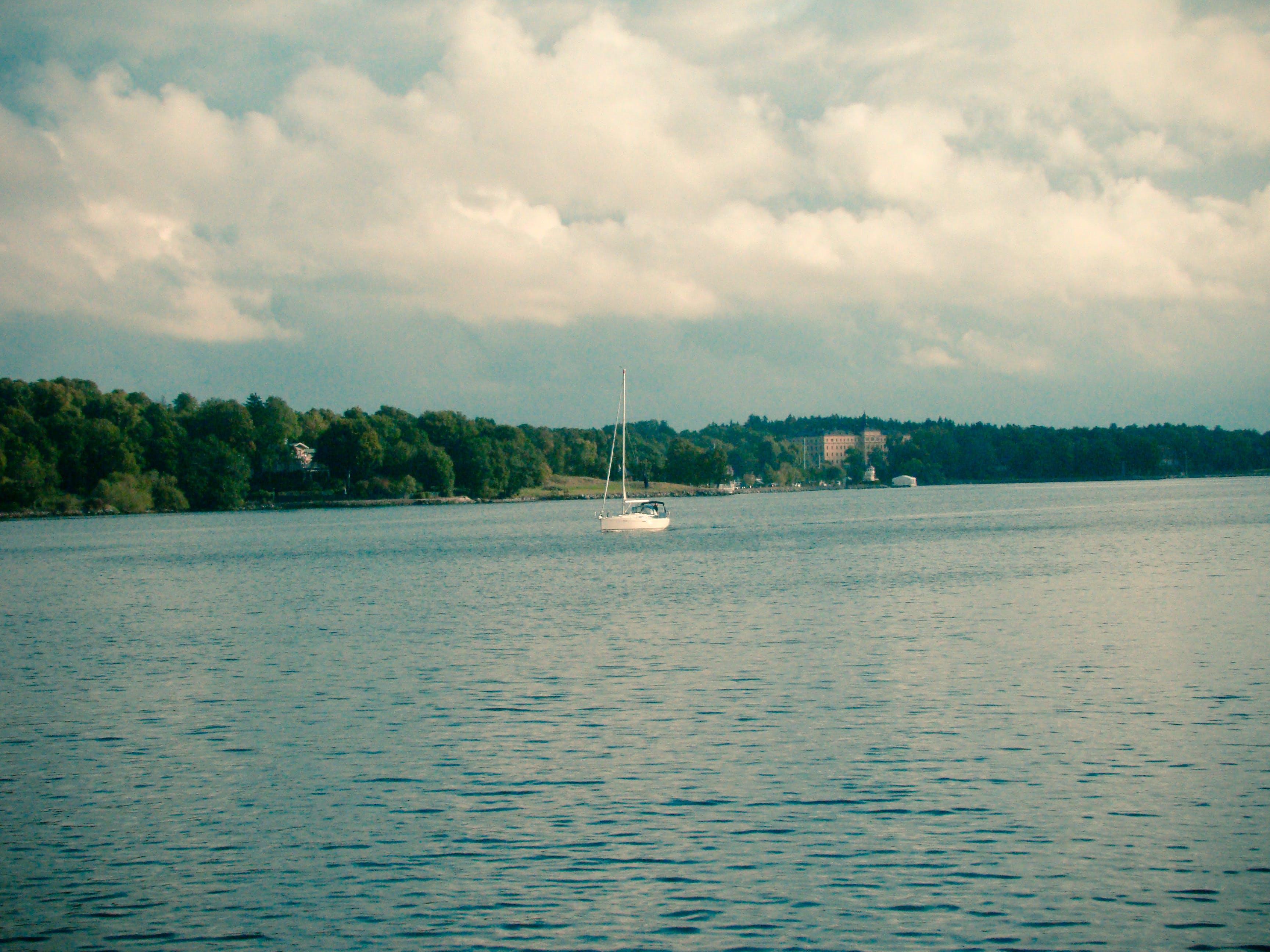 Free stock photo of nature, ocean, sweden