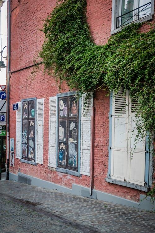 architettura, Belgio, bruxelles