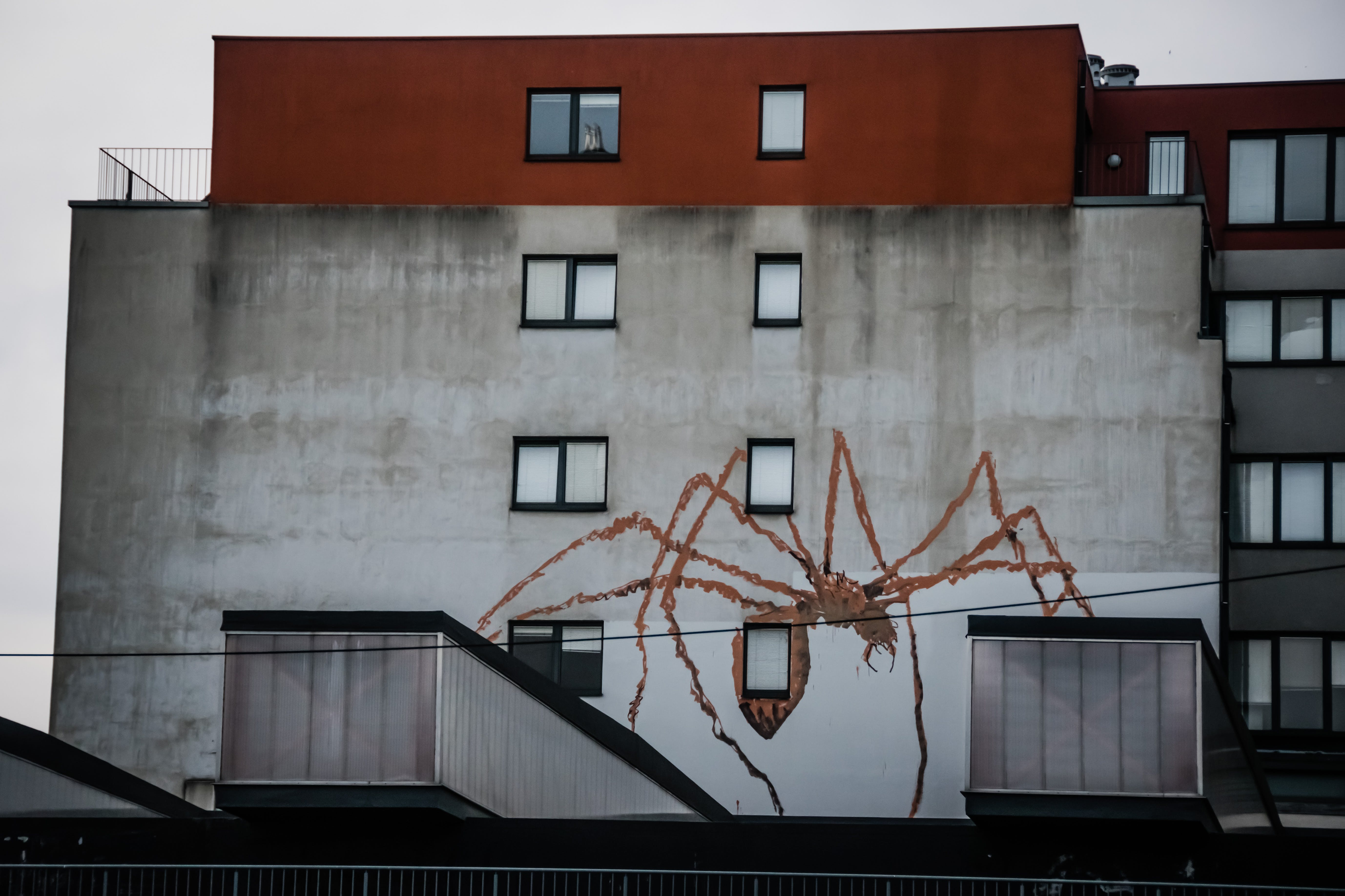 Brown Spider Painted on Gray Wall