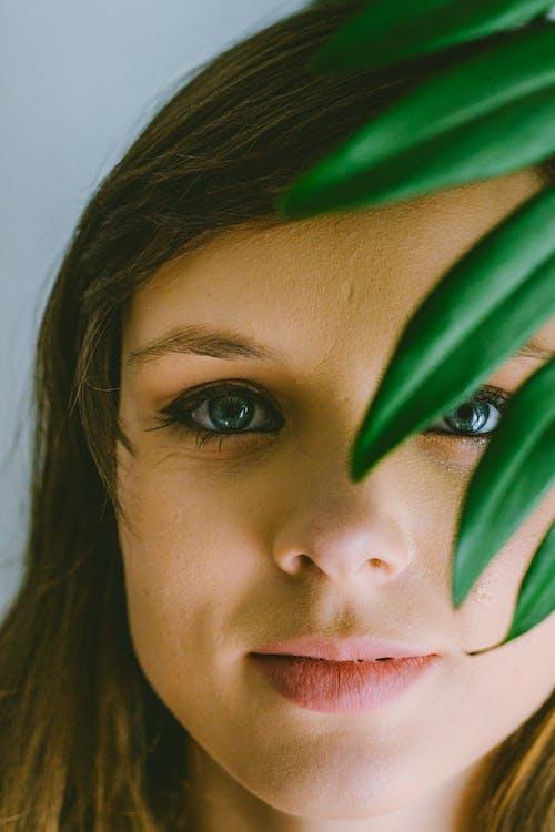 Fotos de stock gratuitas de adentro, amable, armonía, belleza