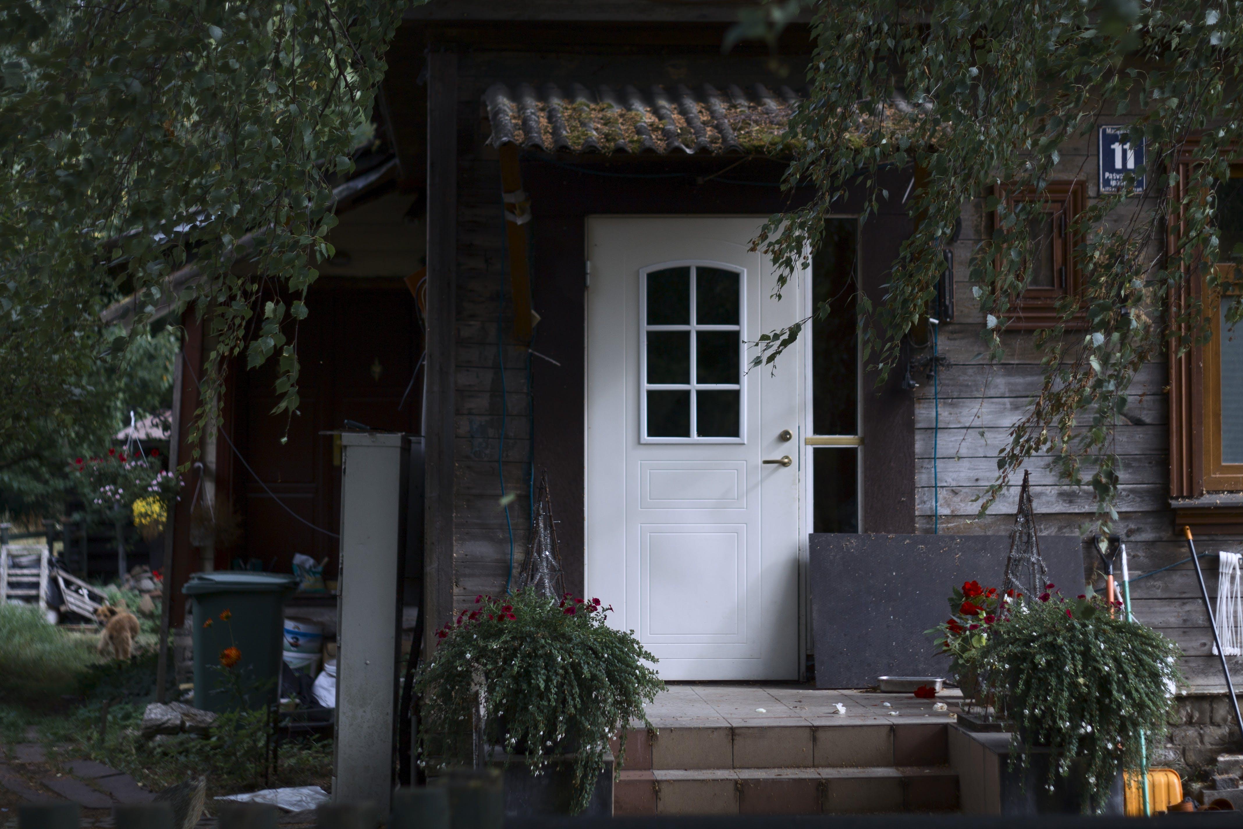 Foto d'estoc gratuïta de casa tradicional, confortable, Europa, porta