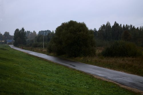 Free stock photo of rain, road