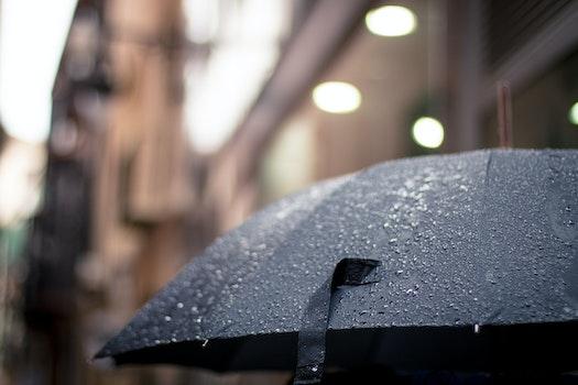 Free stock photo of weather, rainy, rain, umbrella