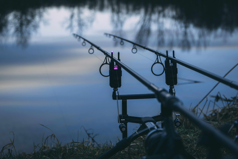 Free stock photo of blue water, evening sky, fishing, fishing rod