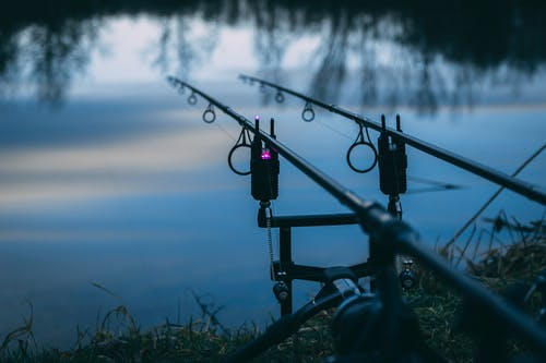 Free stock photo of blue water, evening sky, fishing