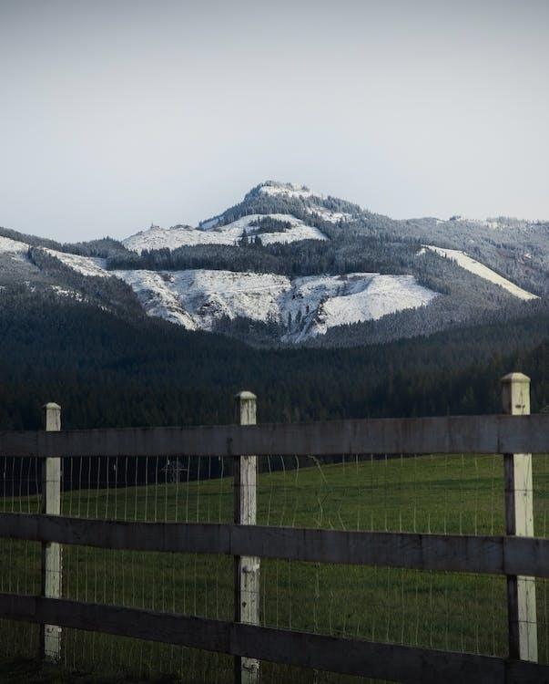barrière, clairière, clôture