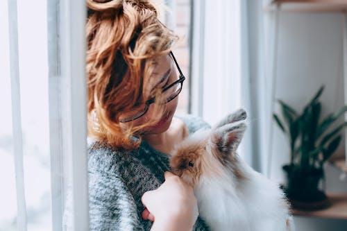 Základová fotografie zdarma na téma dioptrické brýle, domácí mazlíček, holka, kožešina