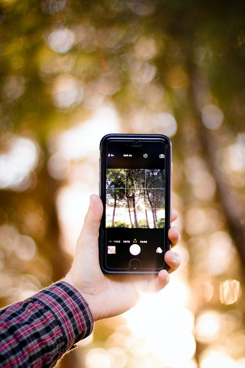 Person Holding Smartphone Taking Photo of Woods during Golden Hour