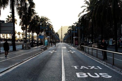 거리, 걷고 있는, 도로, 랜드마크의 무료 스톡 사진