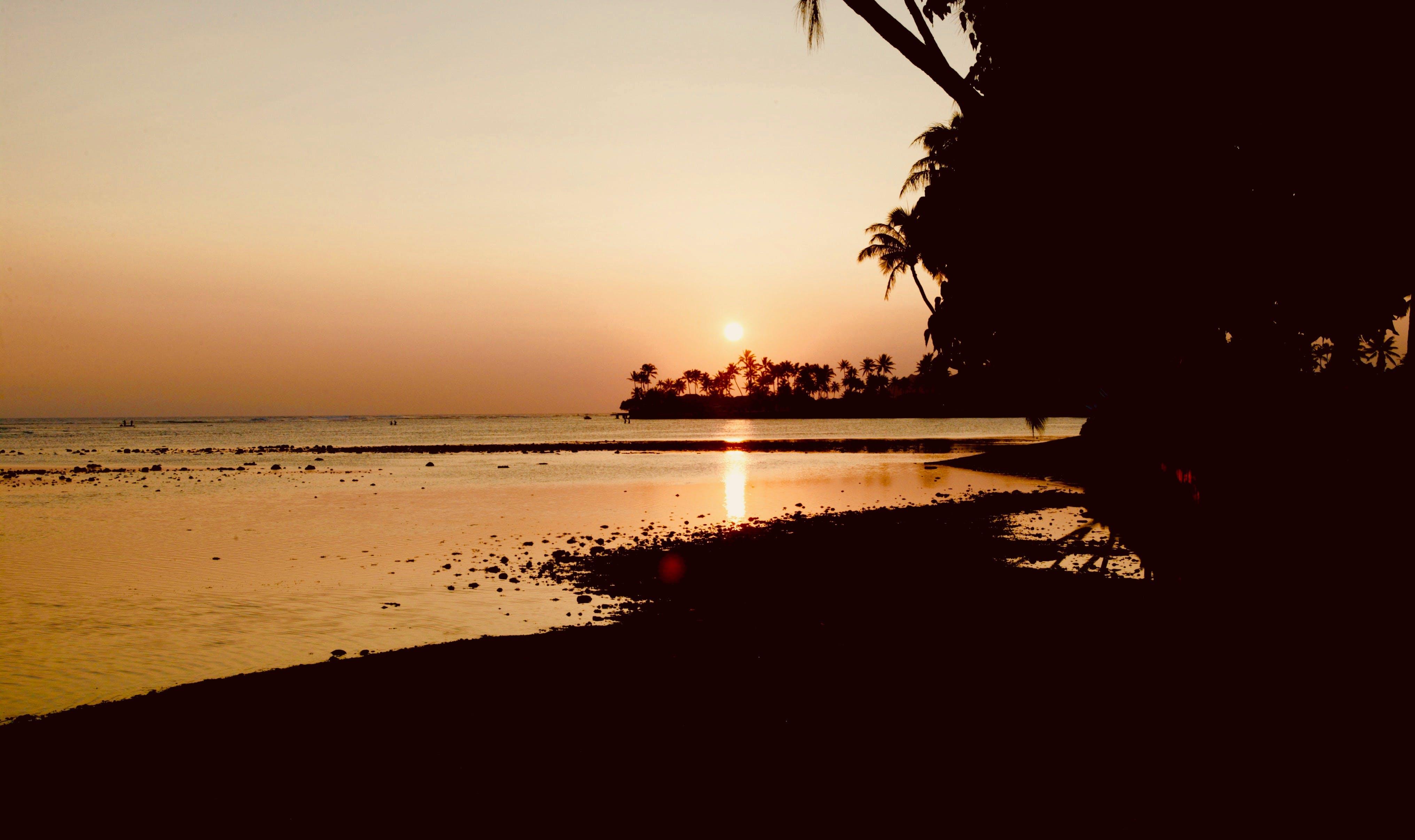 Free stock photo of beach, ocean, sunset, tropical