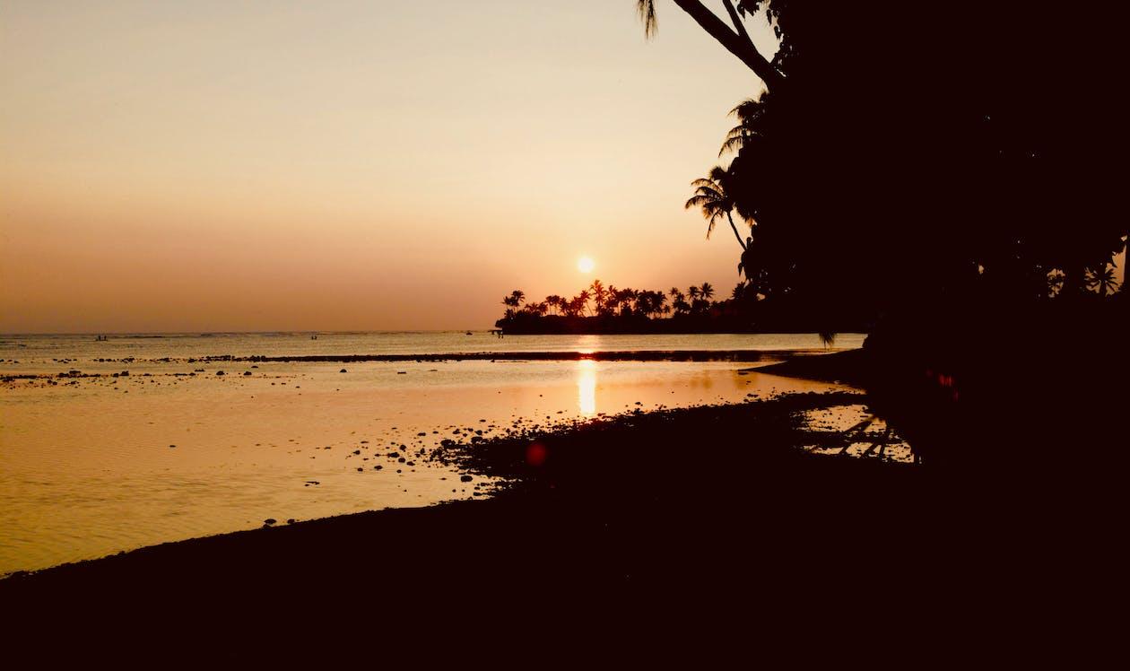 bờ biển, Hoàng hôn, nhiệt đới