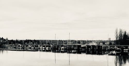 Free stock photo of black and white, boats, harbor, seattle