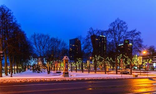 Foto profissional grátis de chrystmas, klaipeda, зима