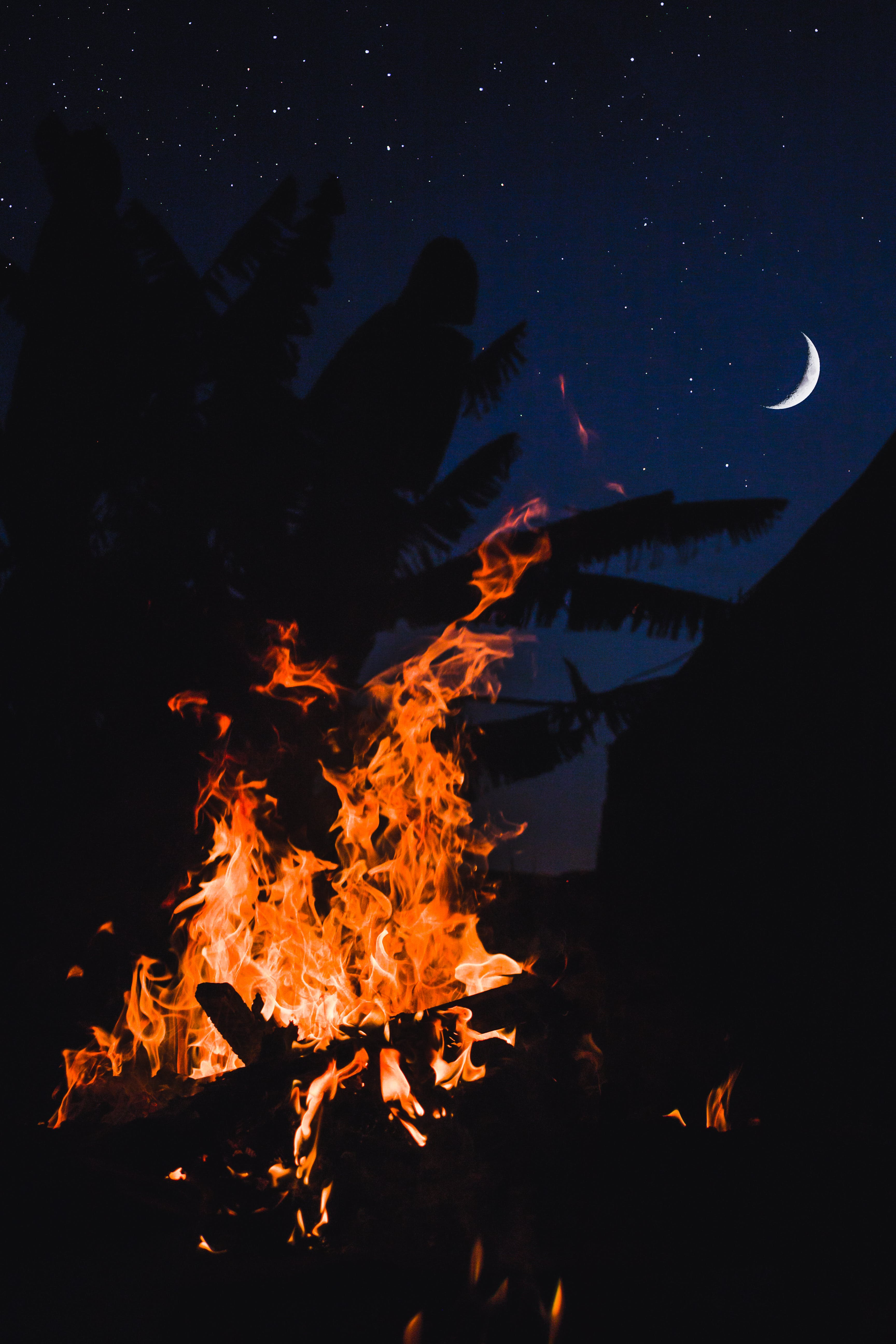 Bonfire Under Crescent Moon in the Sky