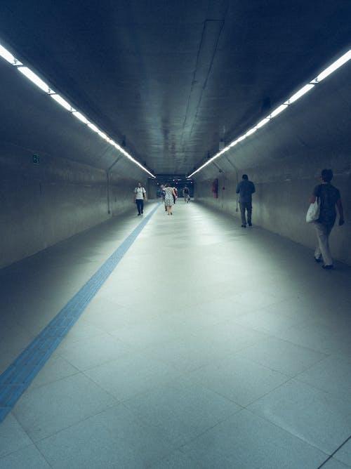Fotobanka sbezplatnými fotkami na tému hala, ľudia, sieť metra, svetlá