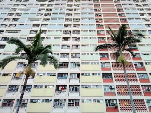 Fotobanka sbezplatnými fotkami na tému architektonický dizajn, architektúra, budova, bytový dom