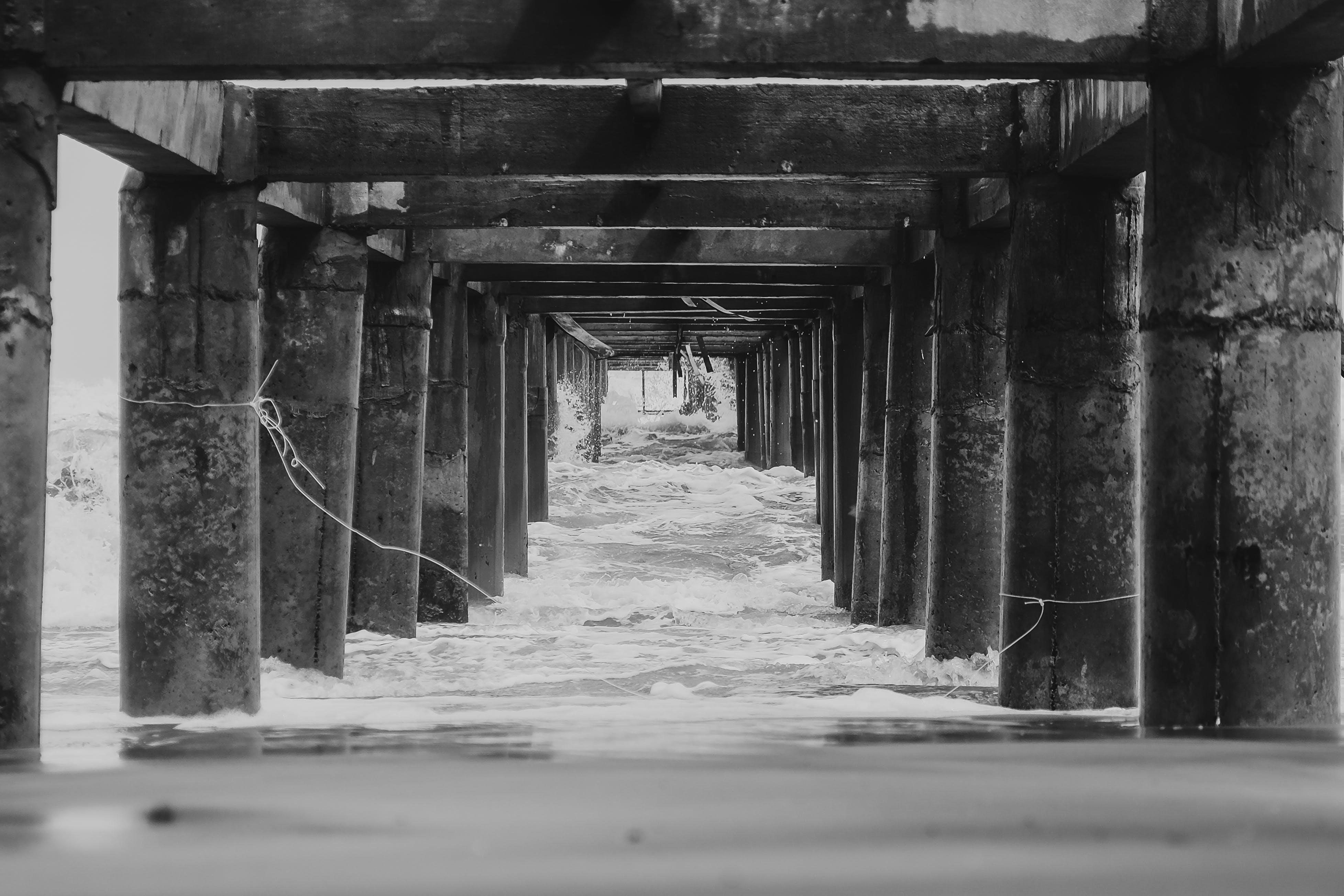 Foto profissional grátis de colunas, debaixo, espaço, litoral