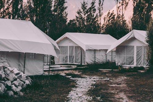 Ảnh lưu trữ miễn phí về Ấn Độ, cắm trại, khu cắm trại, trại