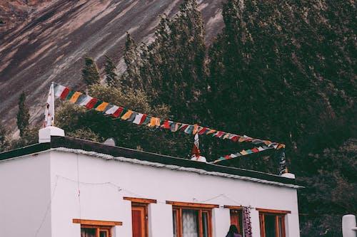 Бесплатное стоковое фото с архитектура, вид, гора, деревья