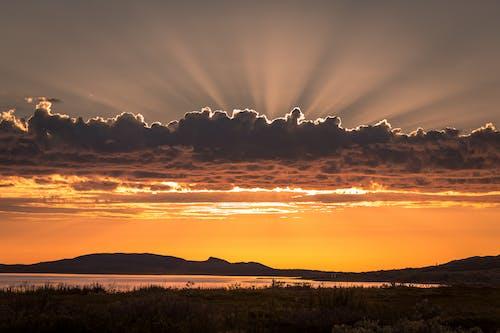 Základová fotografie zdarma na téma goji, polární, sever, večerní slunce