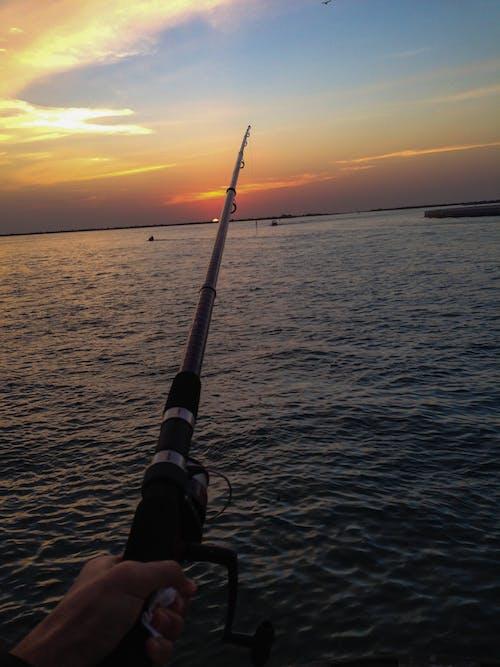 Δωρεάν στοκ φωτογραφιών με αλιεία, αναψυχή, άνθρωπος, άτομο