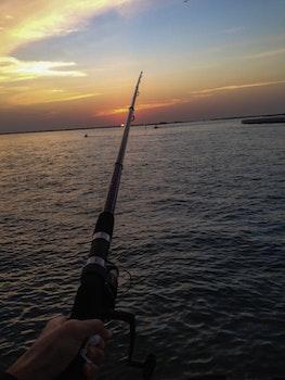 People Fishing on Sea
