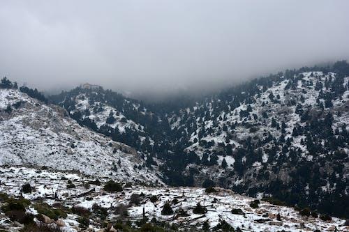 Бесплатное стоковое фото с высокий, гора, живописный, зима