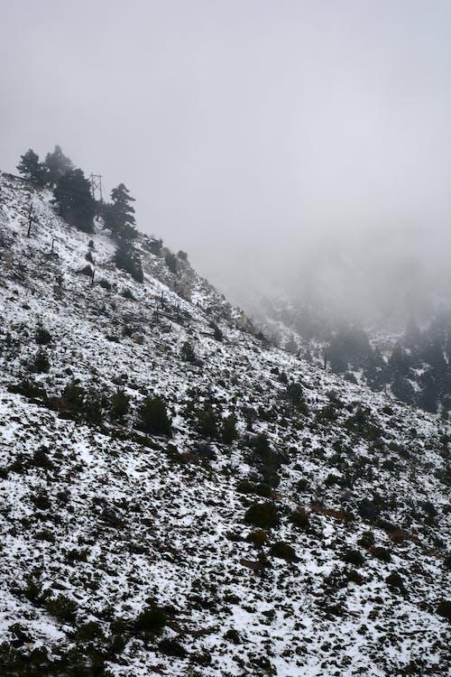 Бесплатное стоковое фото с гора, зима, пейзаж, простуда