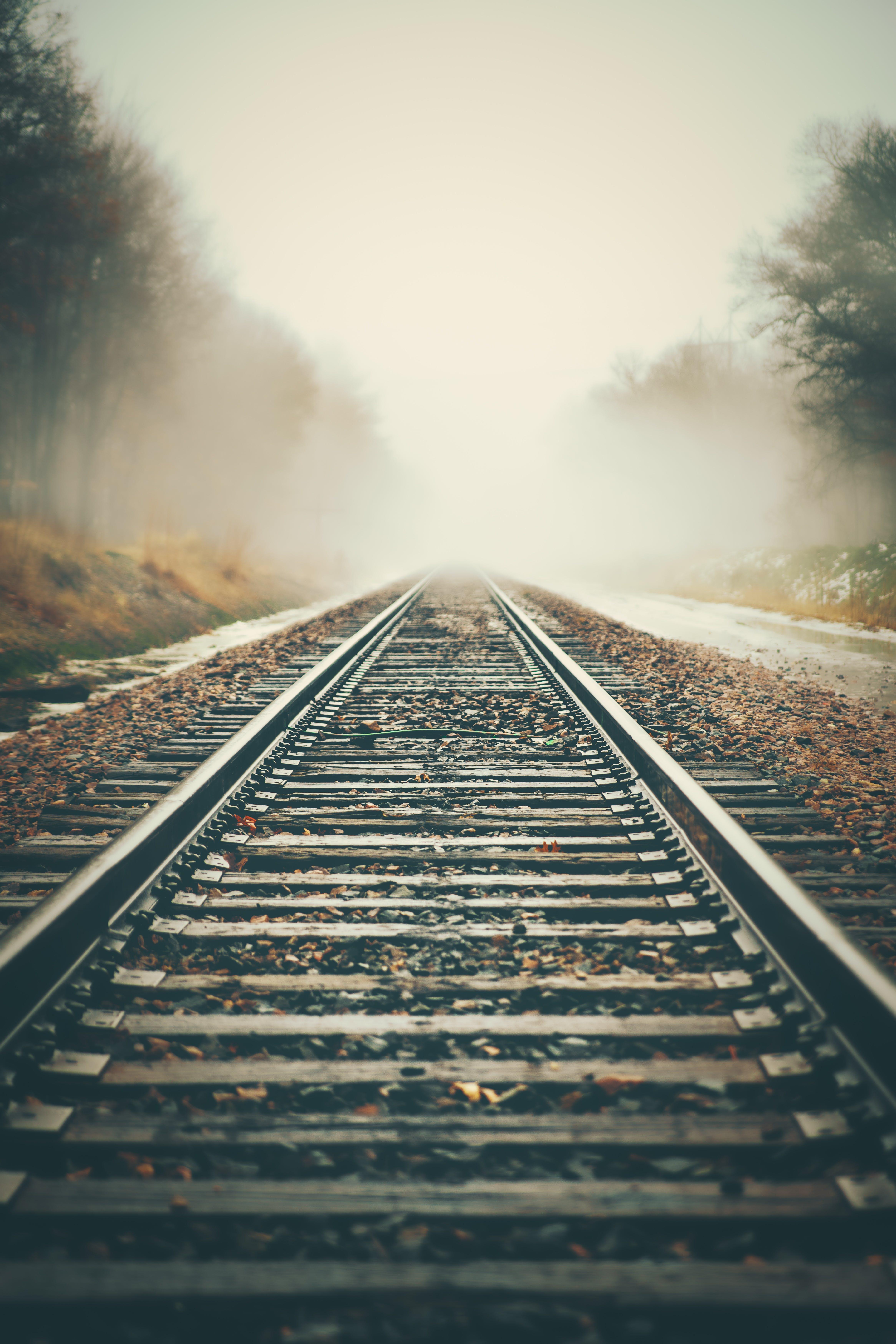 Kostenloses Stock Foto zu eisenbahn, nebel, neblig, perspektive