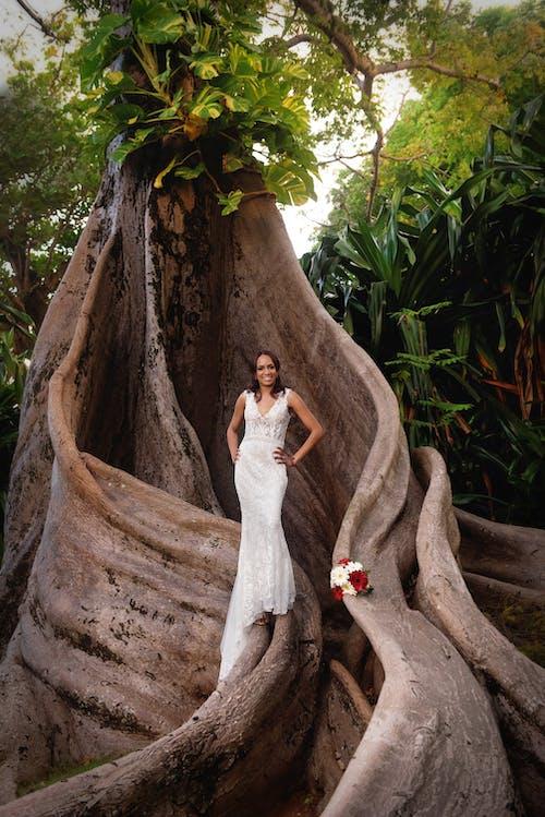 Бесплатное стоковое фото с дерево, женщина, корень, невеста