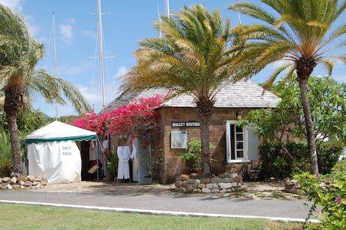 Free stock photo of ANTIGUA, caribbean, old house, palms
