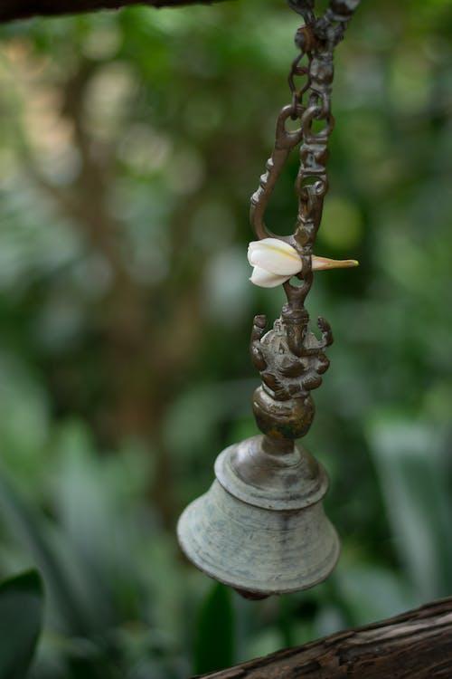Free stock photo of bell, ganesha, garden