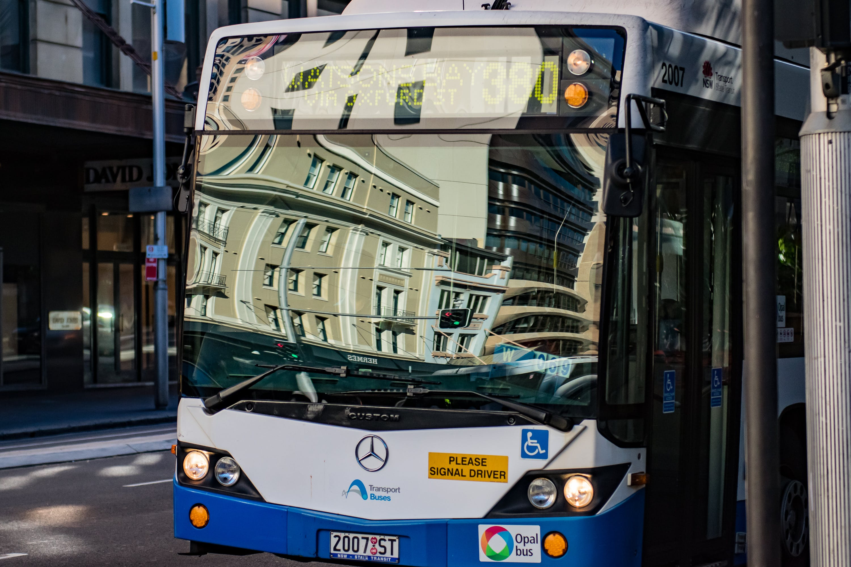 Free stock photo of #buses, #sydney, #sydneyCBD