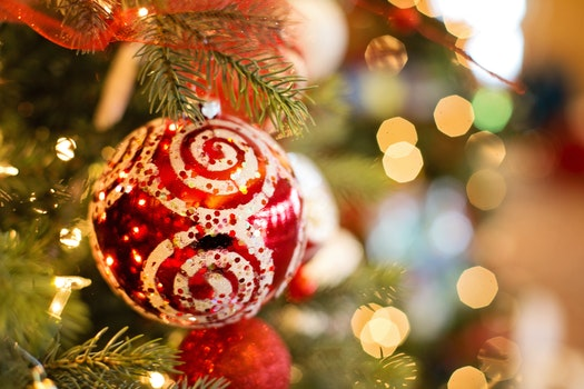 Free stock photo of decoration, christmas, xmas, christmas tree