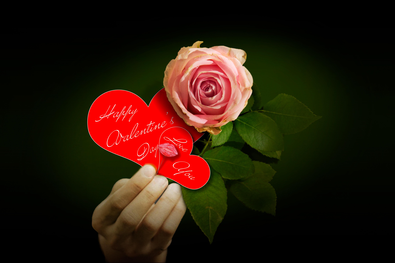 Photo Gratuite De Saint Valentin
