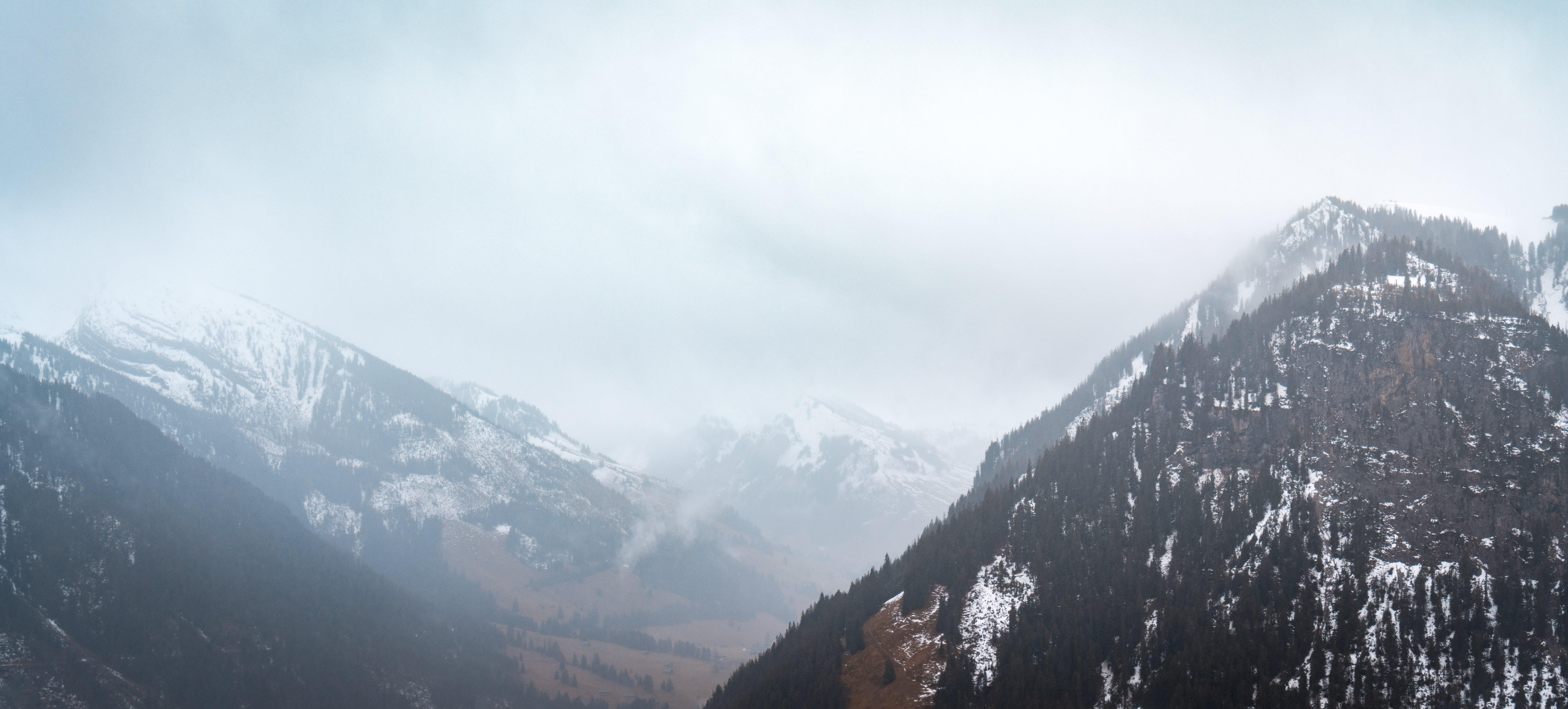 Free stock photo of foggy, landscape, misty, moody
