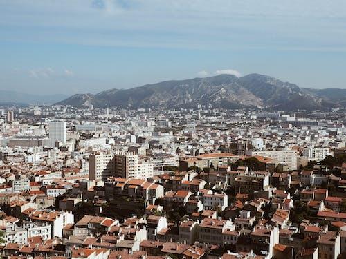 Foto d'estoc gratuïta de amb boira, boira, cel, ciutat