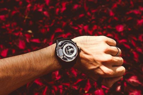 Kostnadsfri bild av ärm, armbandsur, färg, ha på sig