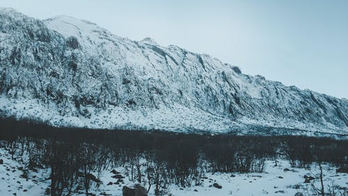 Darmowe zdjęcie z galerii z 2019, błękitne góry, drzewa, góra