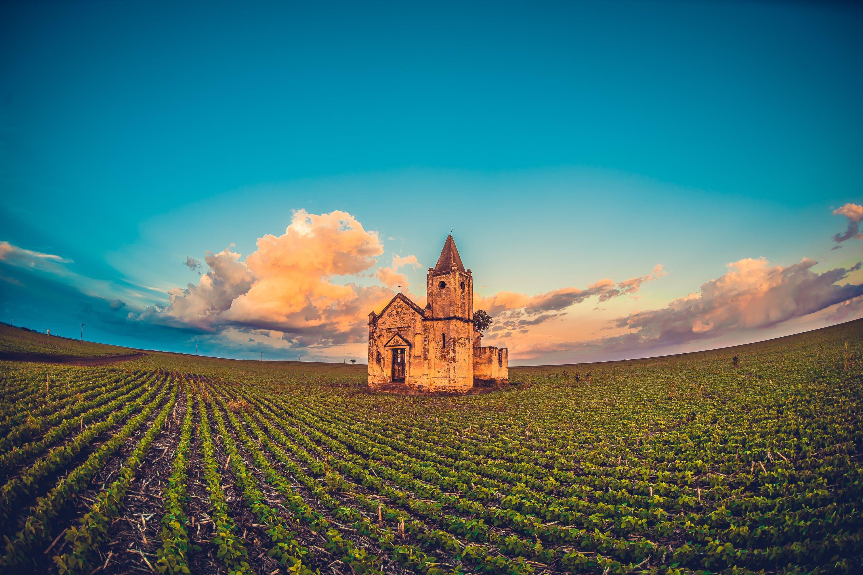 Foto stok gratis bidang, gereja, lahan pertanian, pertanian