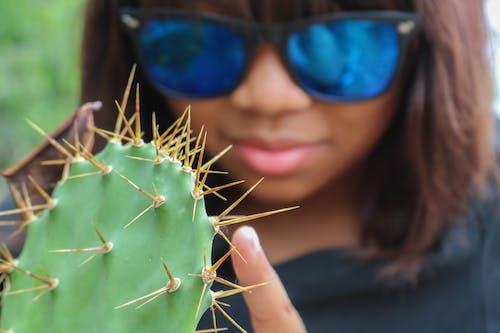 Free stock photo of cactus, finger, prick, prickly
