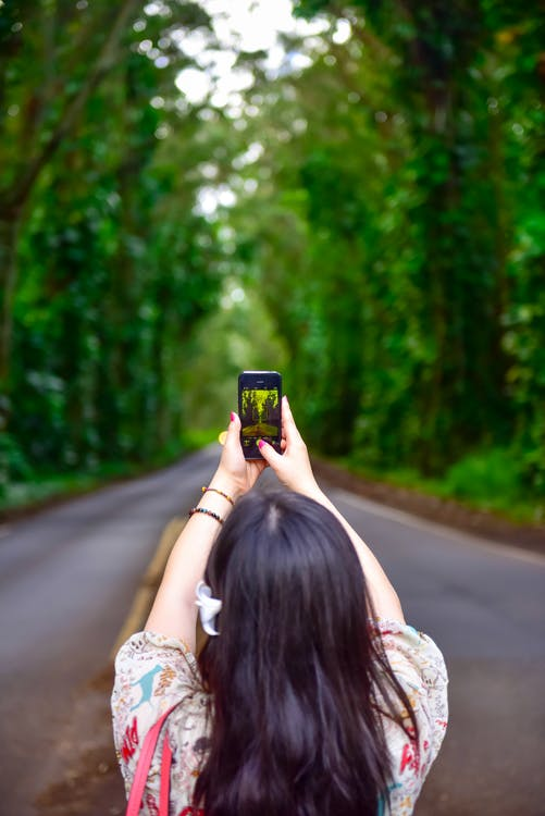 Woman Holding Smartphone on Street Between Trees
