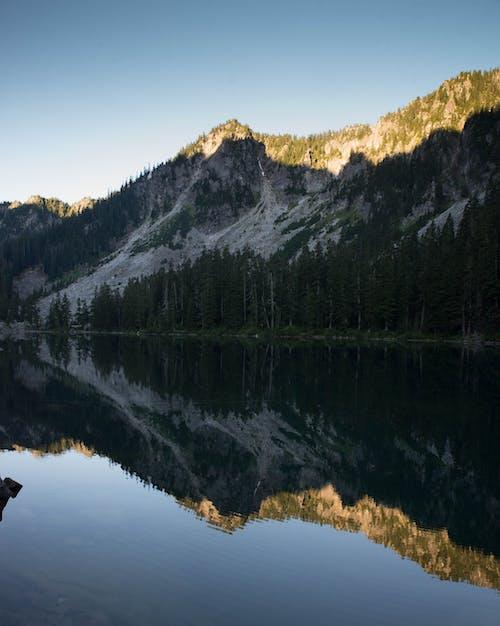 Fotos de stock gratuitas de a orillas del lago, agua, al aire libre, arboles