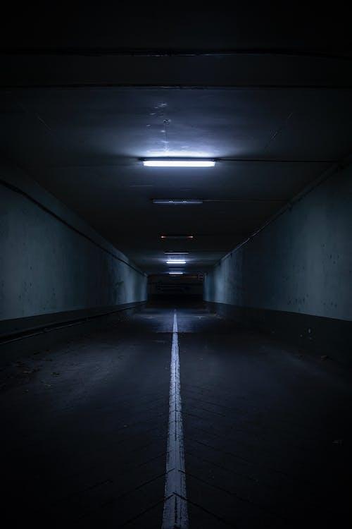 地下, 地鐵系統, 天花板, 室內 的 免费素材照片