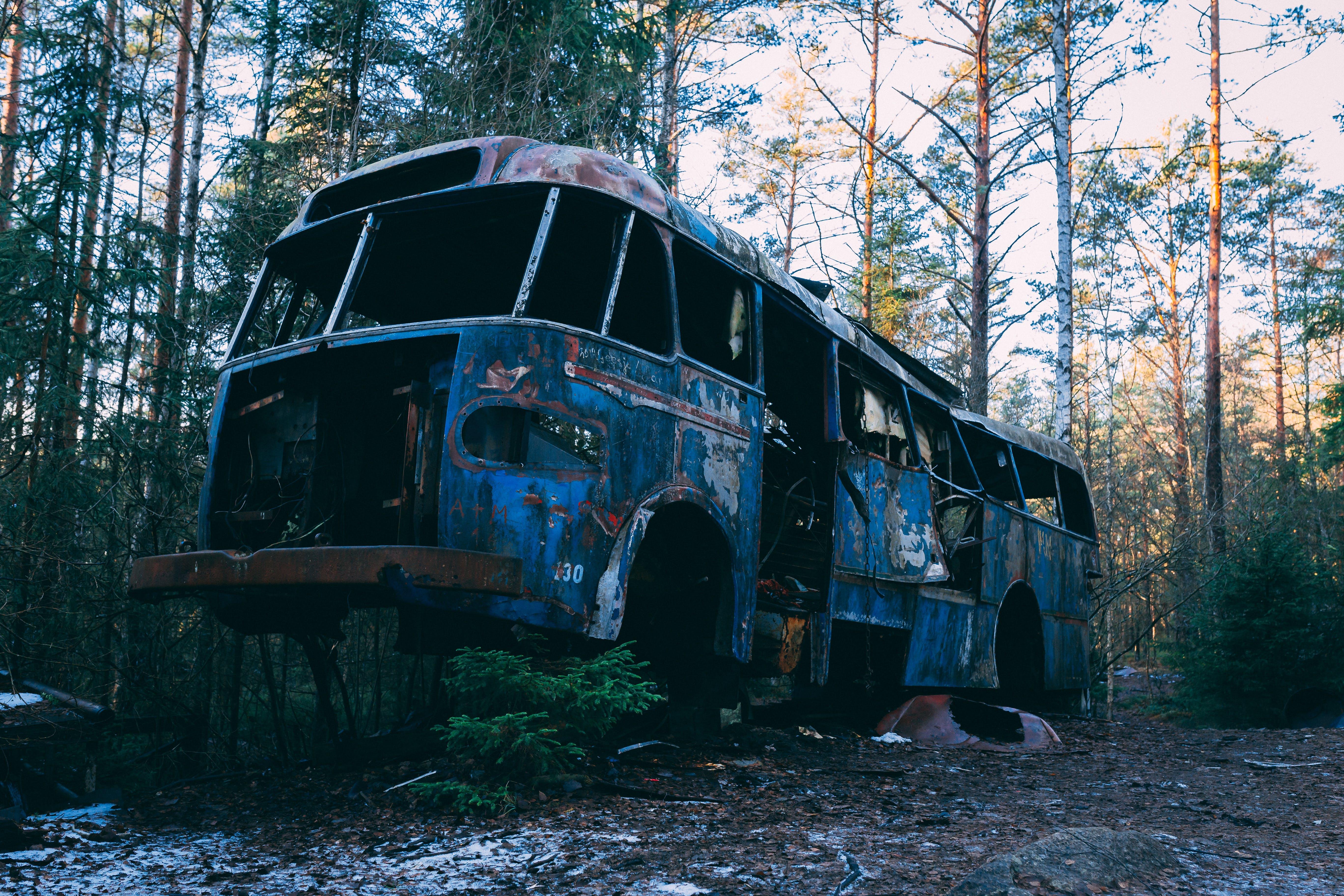 Foto stok gratis barang tak berguna, diabaikan, hutan, kecelakaan