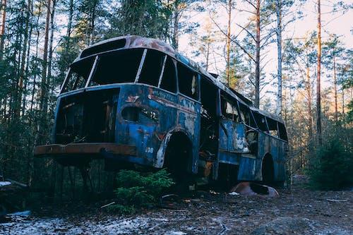 Photos gratuites de abandonné, épave, forêt, suède