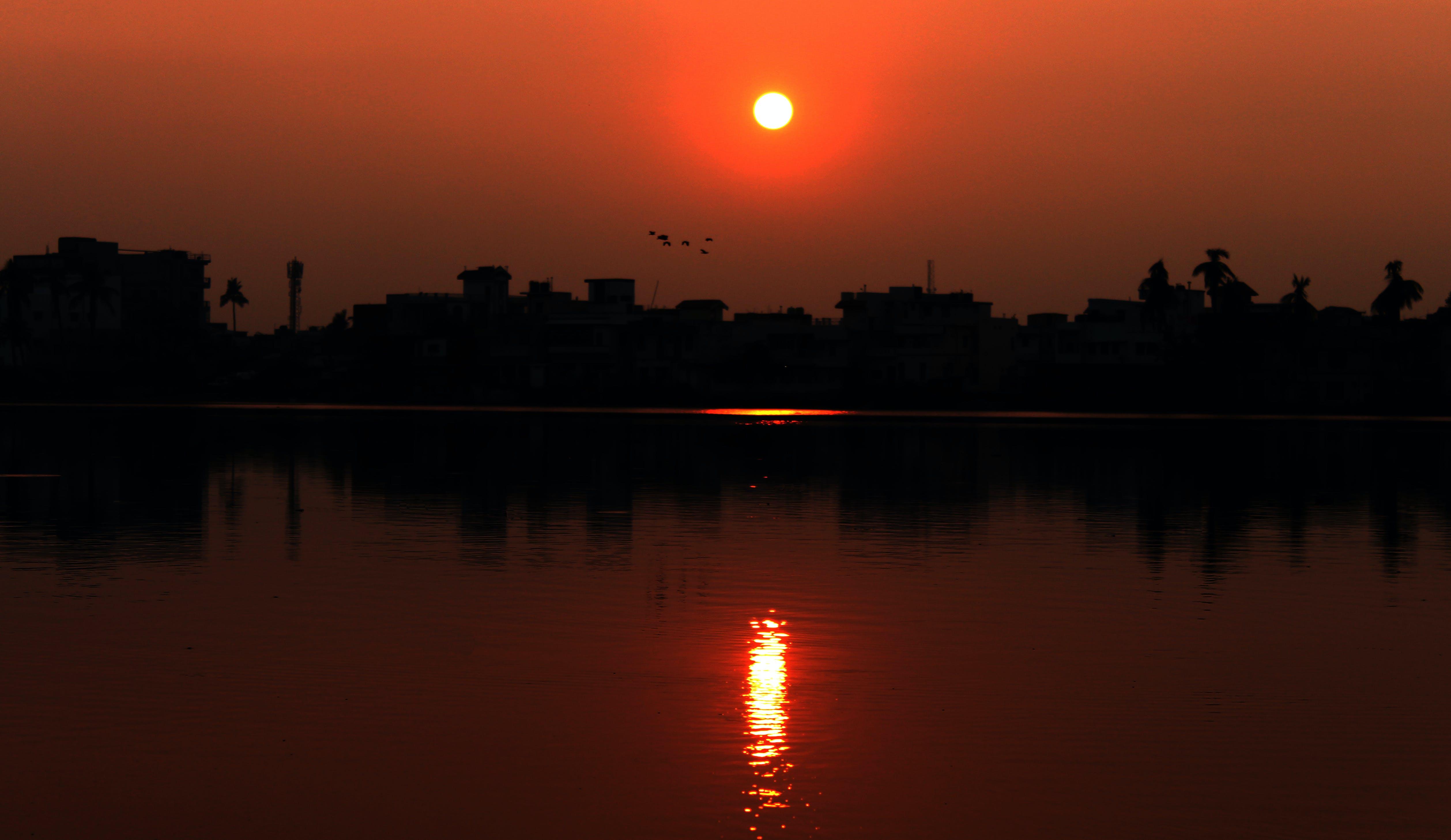 Free stock photo of facrs-patna, raj-darbhanga, sunita-bharti